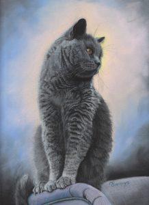 Fannys - chat pastels secs - Le chartreux