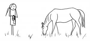 En allant chercher le cheval au pré